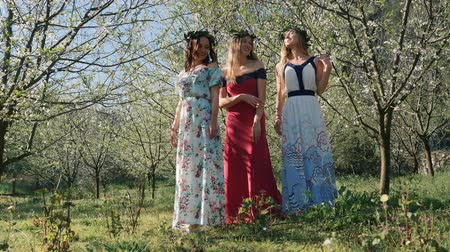 śliwka : Young beautiful caucasian women in long dresses in bay leaf wreath standing dreamily in spring blossom plum garden.
