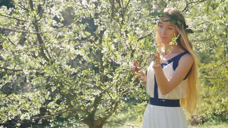 нежный : Young beautiful woman with long blond hair in bay leaf wreath smells spring blossom plum trees.