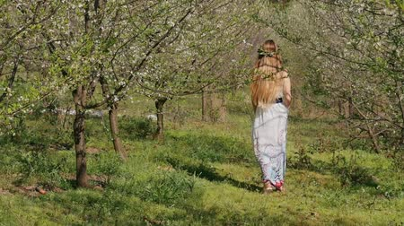 bum : Young beautiful caucasian woman in long dress in bay leaf wreath walking dreamily in spring blossom plum garden. Stock Footage
