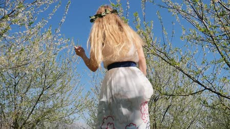 śliwka : Young beautiful caucasian woman in long dress in bay leaf wreath whirls in spring blossom plum garden. Slow motion