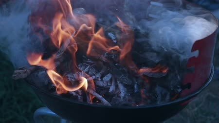 ontvlambaar : Fire wood charcoal for barbecue, orange fire in metal grill brazier. Preparation for summer BBQ party. Summer chill concept Stockvideo