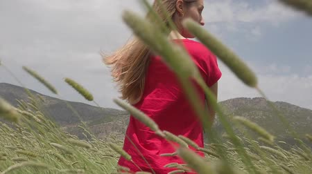 hair growth : A young woman in red t-shirt walking happily through a green field and touching barley ears. Enjoy agriculture harvest. Stock Footage