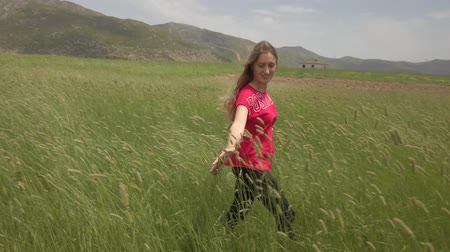 simbolismo : A young woman in red t-shirt walking happily through a green field and touching barley ears. Enjoy agriculture harvest. Stock Footage