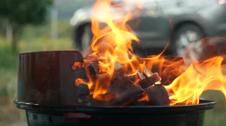 fireplace : Fire wood charcoal for barbecue, orange fire in metal grill brazier. Preparation for summer BBQ party. Summer chill concept Stock Footage
