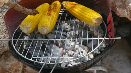 agrarian : Grilling ears of corn on charcoal process. Summer chill and farm food concept