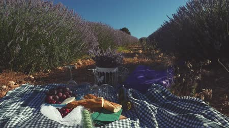バゲット : Delicious vegan cheese, bread, fruits and white wine on green checkered tablecloth on the grass in lavender field. Romantic dinner