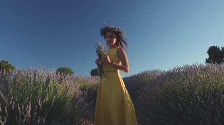 fragrances : Young woman in yellow dress and in wreath enjoying fragrant of lavender bouquet standing in lavender field in windy weather. Stock Footage