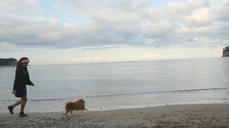 Young woman running after funny Pomeranian Spitz near the sea. Both in Santa hats. New Year holiday concept. Slow motion