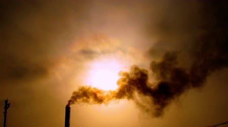 emissions : Factory polluting mother nature by releasing smoke and dirty water. Stock Footage