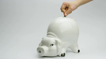 investing : hand placing coins on big white piggy bank