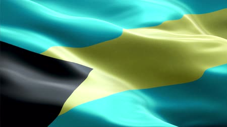 Bahamas waving 3D flag Wideo
