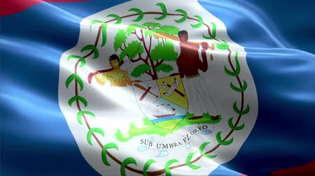 Belize waving 3D flag Wideo