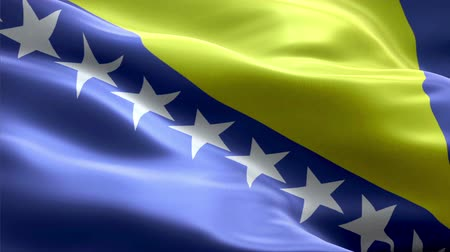 Bosnia and Herzegovina waving 3D flag Wideo