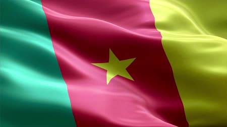 Cameroon waving 3D flag Wideo