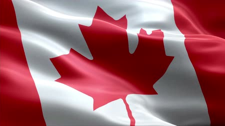 Canada waving 3D flag Wideo