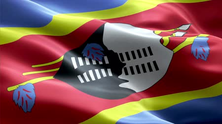 Swaziland waving 3D flag Wideo
