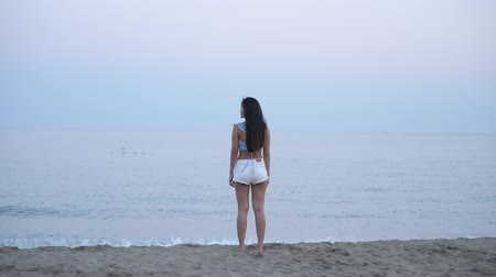 teljes test : Rear View Of Young Asian Tourist Woman Standing By The Beach Stock mozgókép