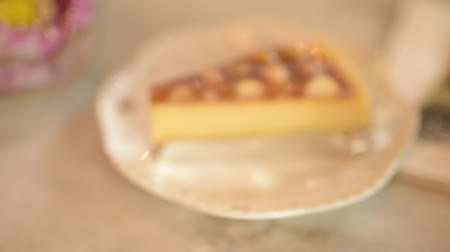 sajttorta : Hand held shot of macadamia cake served on table Stock mozgókép