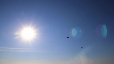 squadron : Military fighters makes a maneuver in the sky.