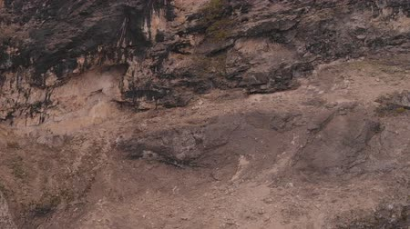 antilop : Aerial shot of a run herd of ibex on the steep mountain. Stok Video
