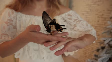 хрупкость : Big beautiful yellow butterfly on a womans hands.