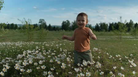 Steadicam shot of a little happy boy running across a flower field. The child happily walks through the clearing. Slow motion