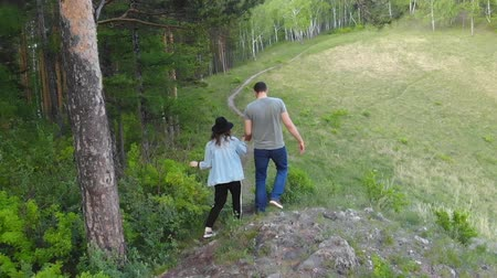 Aerial shot of a pair of young people walking along a forest path.