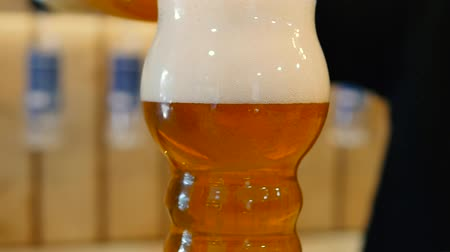 Man pours beer into a glass, beer foam in a glass. Dostupné videozáznamy