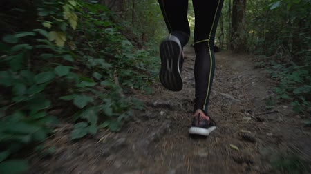 Low angle view of fitness girl jogging in the forest early in the morning