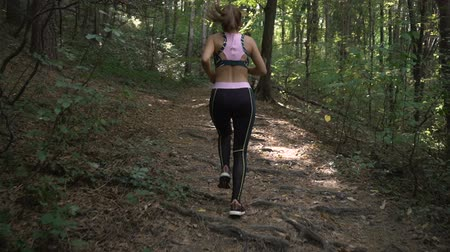 Fitness brunette girl with ponytail and sports outfit jogging in summer forest