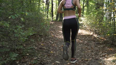 Energetic Female Jogger Exercising In the Morning, Running Along Forest Path