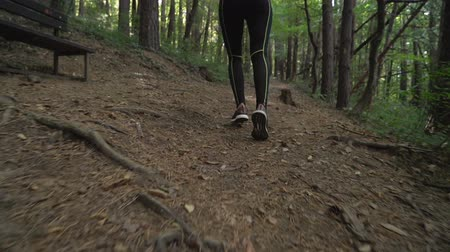 Fitness brunette girl in sportswear Running At Forest Trail