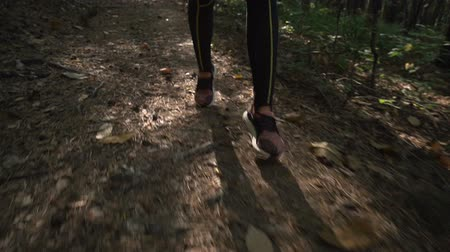 apertado : Close view of girls legs running,jogging on forest path