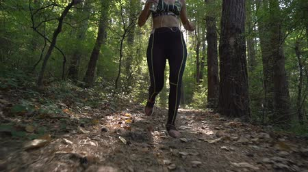 apertado : Female jogger in sports outfit and sports shoes running down a forest path, carrying water bottle