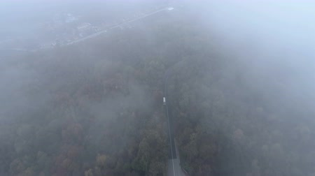 bad mood : Top view of white truck driving on dangerous, misty forest road. Drone chasing white bus on foggy road
