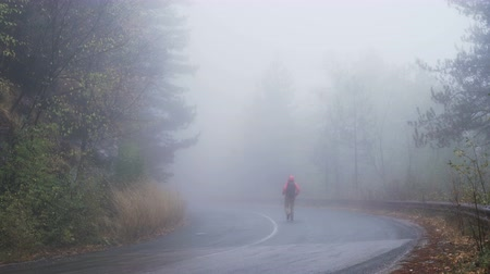 direkt : Lost tourist is wandering in spooky, misty forest in rainy day