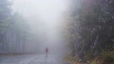 desolado : Silhouette of a lonely man standing on the foggy road, lost and searching for help