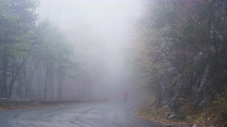 ahead : Lonely tourist coming out of the fog, picking herbs of the side of the road