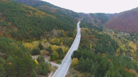 traço : Aerial view of black car speeding on straight highway trough forest in the mountains Vídeos