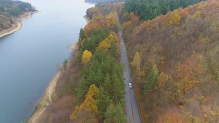кривая : Drone chasing vehicle driving and speeding on forest road
