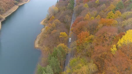straight road : Drone following white car driving and speeding on straight asphalt road trough mixed autumn forest