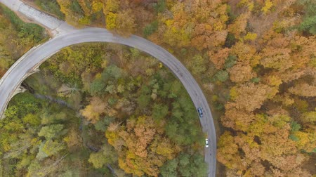 honit : Drone following two cars speeding on winding forest road in the fall season Dostupné videozáznamy
