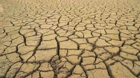 besmettingsgevaar : Panoramic view of the cracked mud bottom of dried out dam in Bulgaria. Disastrous drought Stockvideo