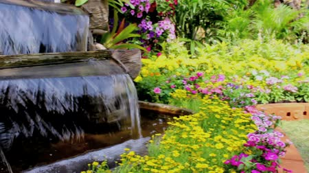 úmido : Footage waterfall flows and vivid flowers pot decoration in cozy home flower garden on summer.