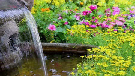 Footage waterfall flows and vivid flowers pot decoration in cozy home flower garden on summer.