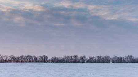 aridez : Timelapse. Russia. Rostov region. The movement of the clouds at sunset in the snowy steppe in winter.