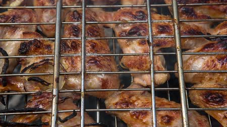 ribs : Food. Preparation of roasted meat on the fire outdoors for a picnic and relax. Stock Footage