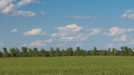 Russia, time lapse. The movement of the thunderclouds over the fields of winter. Stock Footage