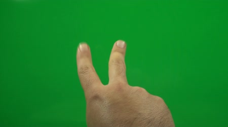 ключ : Hand Counting To Three On A Green Screen, Chroma, Key, Signs, Gestures