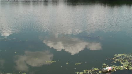 atık : Polluted Lake, With Clouds Reflection In Water, Pollution, Waste, Bottle, Dirty